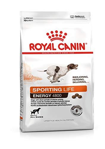 Royal Canine Adult Endurance 4800 13Kg 13000 g