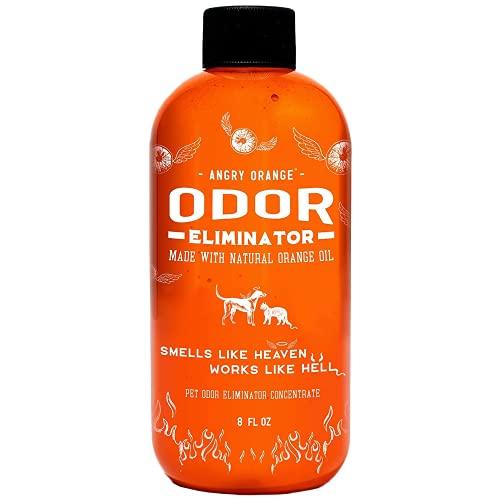2. Angry Orange Pet Odor Eliminator (Best Smell Neutralizer)
