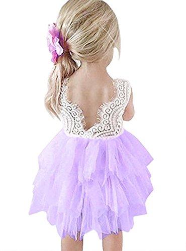 Colorfog Baby Girl Backless Lace Tutu Dress Flower Girl Wedding Party Dress (Lavender, 2T)