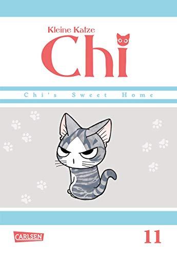 Kleine Katze Chi 11 (11)