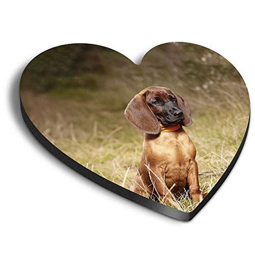 Destination Vinyl ltd Imanes de corazón MDF – perro de montaña bávaro para oficina, armario y pizarra blanca, pegatinas magnéticas 12484