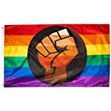 QPOC Pride Flag 3x5 Foot - LGBT+ Pride Flag with Power Fist, Inspired by Black Brown Philadelphia / Philly Pride Flag, Vivid Colors, Sleeve and Metal Grommet