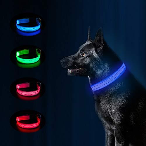 collar con luces para perros fabricante MASBRILL