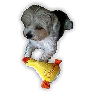 Hunde Spielzeug Kissen kleine Ente Hundespielzeug Quietscher Name Wunschname viele Farben Unikat persönliches Geschenk…