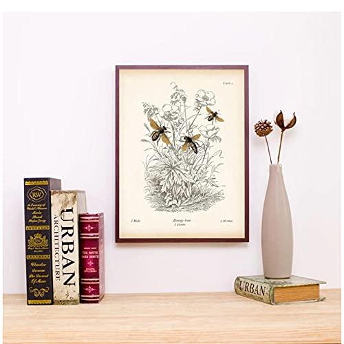 FUXUERUI Educación Natural insecto abeja Vintage cuadro de arte de pared lienzo pintura impresión cartel para decoración del hogar,40x60cm sin marco
