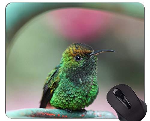 Gaming Mouse Pad Benutzerdefinierte, Kolibri Vogel grün Gaming Mouse Pads