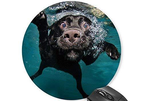 Runde Maus Matte Schwimmen Hund Maus Pad