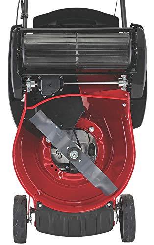 Mountfield SP160RPD Rear Roller Self-Propelled Rotary Mower 41cm