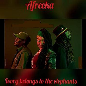 Ivory Belongs to the Elephants