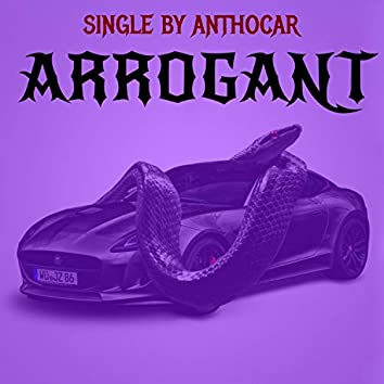 Arrogant (Instrumental Version)