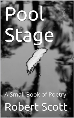 Pool Stage: A Small Book of Poetry (English Edition)
