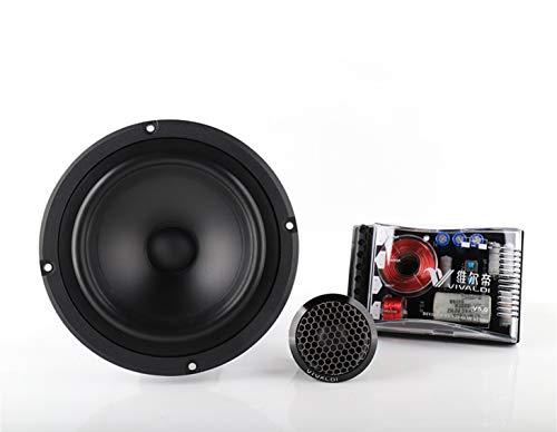 Ad alta fedeltà Audio Suite V4.0 dicotomica Horn for gli autoveicoli e di uso della casa