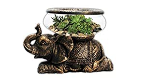 The Nifty Nook New Good Luck Decorative Gold Antiqued Elephant Glass Bowl,Terrarium or Candle Holder with Color Gift Box