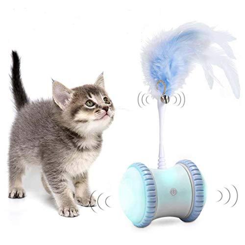 DORSION Gatto Palla, Auto Altalena Giocattolo per Gatti, Ricaricabile USB Palla Giocattolo Gatto Interattiva, Palla Giocattolo per Gatti