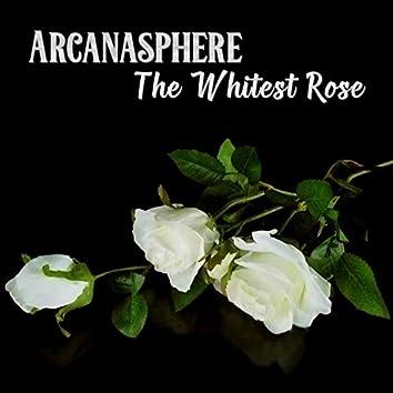 The Whitest Rose