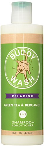 Cloud Star Buddy Wash Dog Shampoo and Conditioner, 16oz, Green Tea & Bergamot