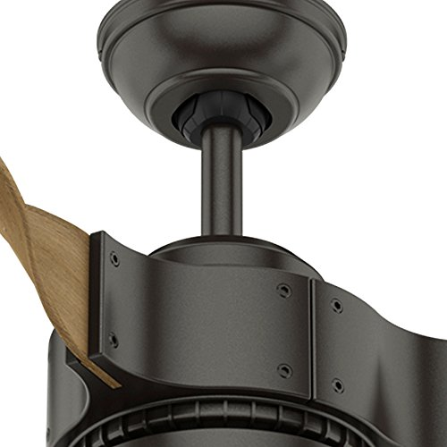 Hunter Fan Company 59226 Hunter 54' Apache Noble Bronze Ceiling Fan with Light with Handheld Remote,...