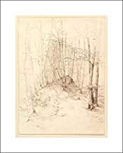 Heinrich Dreber - 16x20 Art Print by Museum Prints - Forest View in The Menterschweige District Near Munich