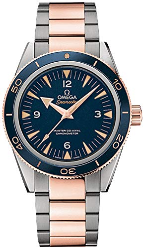 Omega Seamaster 300 Co-Axial 41mm Titanium Men's Watch 233.60.41.21.03.001