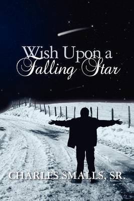 [(Wish Upon a Falling Star)] [By (author) Charles C Smalls Sr] published on (April, 2012)
