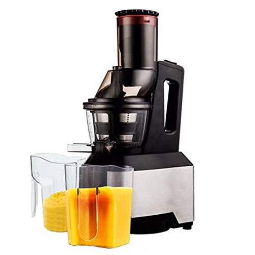 FENG&HE Entsafter Gemüse und Obst,Slow Juicer mit Rücklauffunktion, Anti-Oxidation Juicer Extractor mit geräuschlosem Motor, Saftauffangbehälter und Reinigungsbürste für einen nährstoffreichen Saft