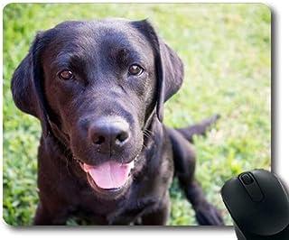 Yanteng Juego de Alfombrilla de ratón, Perros, Cachorros, M