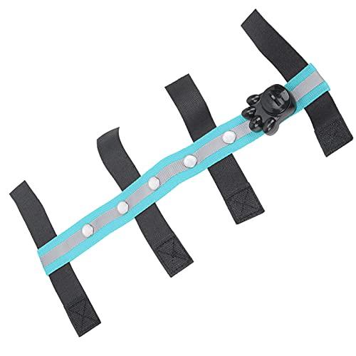 Cinturón LED para correr de noche, diseño de gancho y bucle para la cabeza de caballo LED Correa LED flexible para ecuestre para exteriores(blue)