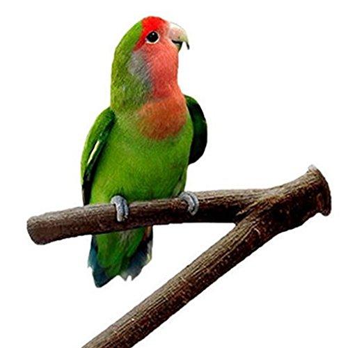 Namgiy Juguete de Juguete para Pájaros o Pájaros, para Pájaros, Loro, Cacatúa, Jaula de Pájaros, Accesorios DE 15 cm