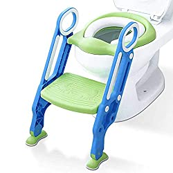 Potty trainer toilet seat with step srool and ladder