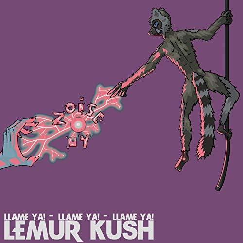 Lemur Kush