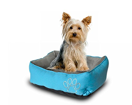 Pet Paw Pet Bed for Cats and Small Dogs