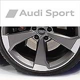 PUMU Adesivo per Cerchi e specchietti AUD Sport A3 A4 A5 A6 Q3 Q5 TT S-Line Sticker Tuning (Argento)