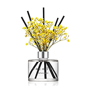 Cocodor Preserved Real Flower Reed Diffuser / Refreshing Air / 6.7oz 200ml  / 1 Pack / Reed Diffuser Set Oil Diffuser & Reed Diffuser Sticks Home Decor & Office Decor Fragrance and Gifts