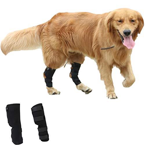 01 Beinschutz für Hunde, verstellbar, für die Hinterbeinstütze, Knieschoner Schützt Verstauchungen durch Arthritis, zur postoperativen Reparatur und zur Stabilisierung von Haustieren