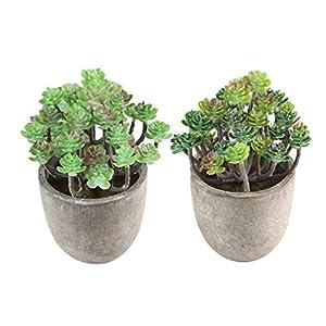 Silk Flower Arrangements XYSQWZ Flower Pot Hangers, 2pcs Succulents Potted Artificial Succulent Plants Fake Cactus Cacti Plants with Pots Bonsai Decor for Courtyard Garden Desk