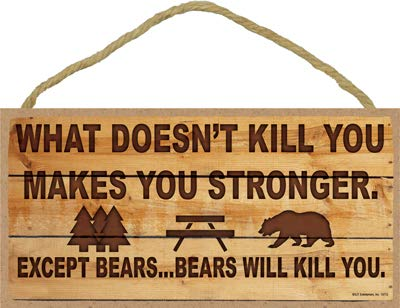 SJT ENTERPRISES, INC. What Doesn't Kill You Makes You Stronger - Except for Bears…Bears Will Kill You. Camper/Camping/RV 5' x 10' MDF Wood Plaque with Twine (SJT13713)