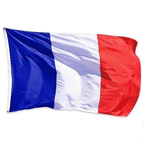 Naisdier Frankreich Fahne [90x150cm] NEU Wetterfest französische Flagge