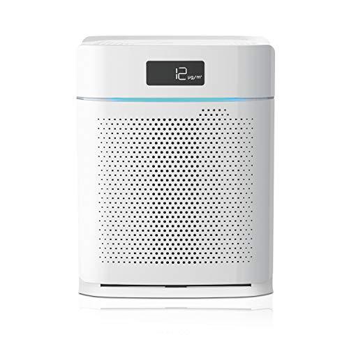 IDEAL - Luftreiniger AP25 bis zu 35m² mit HEPA Filter und Aktivkohlefilter, CADR 250m³/h gegen Feinstaub, Pollen, Allergene, Bakterien, Zigarettenrauch, Abgase - Luftfilter ideal für zuhause