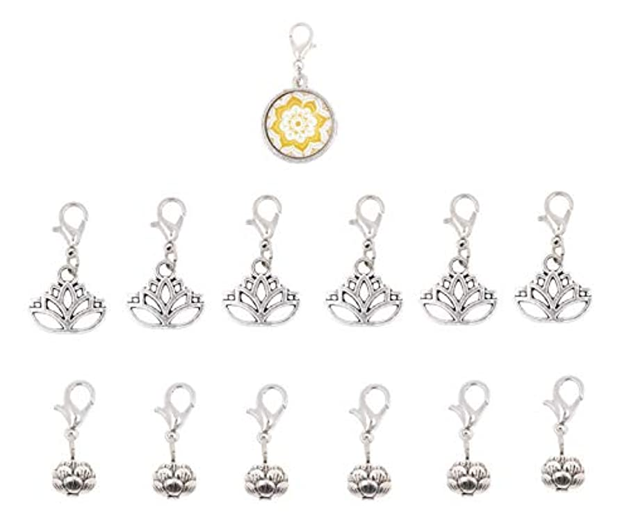Mandala Crafts Clip On Charms with Lobster Clasp for Bracelet, Necklace, DIY Jewelry Making; Silver Tone, 12 Assorted PCs ffyx061091