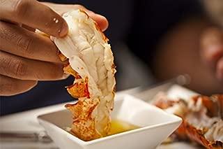 Best flash frozen lobster Reviews