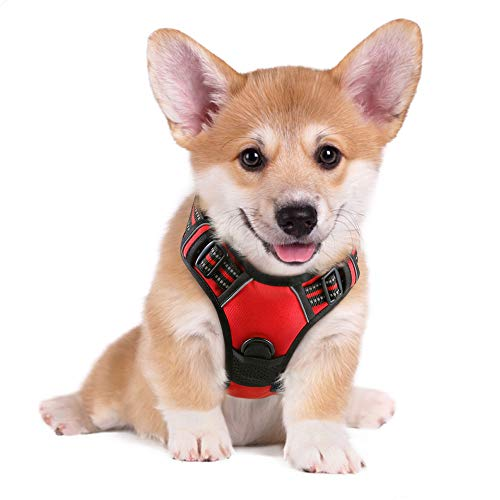 rabbitgoo Dog Harness, No-Pull Pet Harness with 2 Leash Clips, Adjustable Soft Padded Dog Vest, Reflective No-Choke Pet Oxford Vest with Easy Control Handle for Small Dogs, Red, S