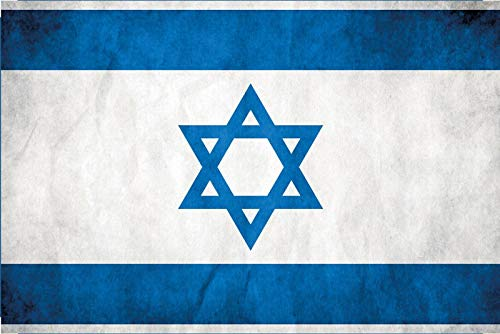 FS land vlag Israel nationale vlag metalen bord bordje gewelfd Metal Sign 20 x 30 cm