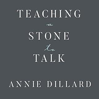 Teaching a Stone to Talk cover art