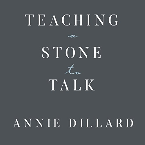 Teaching a Stone to Talk audiobook cover art