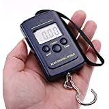 BAIYI 40 Kg X 10 G Tragbare Digitale Mini-Waage Zum Angeln Von Gepäck Gewicht Hängen Elektronische...