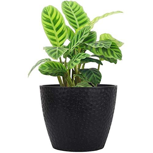 La Jolìe Muse Vasi per piante da esterno, Vaso da interno Fioriera, colore:Nero, Alveare 24CM