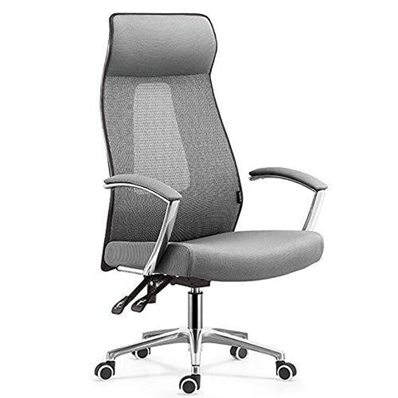 WXF Backrest Thick Mesh Chair, Ergonomic Stylish with Lumbar Support Thick Padded Seat Reclining Mechanism Swivel with Armrests Computer Desk Chair