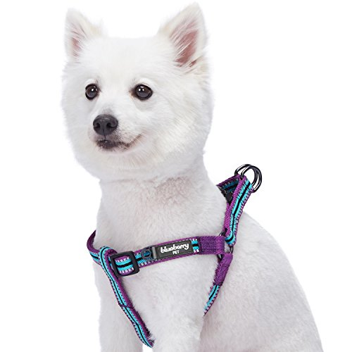 Blueberry 3M Reflective Pet Comfy and Safe Harness