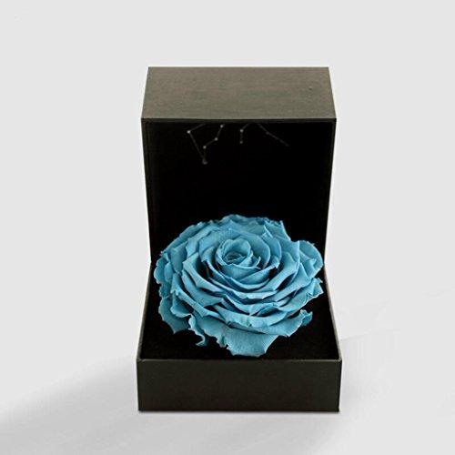 Aoligei Acuario constelación rosa eterna flor caja de regalo creativo romántico permanente de conservación