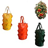 SuperThinker 3 Pack Gardens Hanging Planter Growing Bag with Handles Wall Planter Pouch for Strawberry Bare Root Plants, Herbs, Flowers Home Decoration (3pack)
